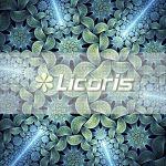 Licoris
