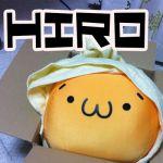 -HiRo-