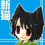新井かなた@新猫(あらねこ)