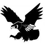 falcon-020