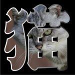 猫(にゃるる)