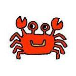 ☆海老蟹☆