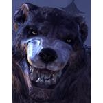 tokino werewolf