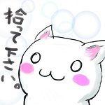 のら(´・ω・)っち