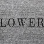 ローワーさん