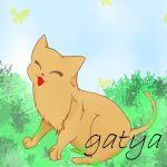 gatya