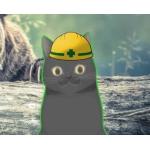 森のアラクマさん