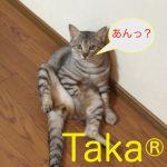 Taka®