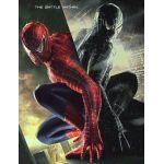 spider555