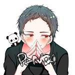 Panda_PPP
