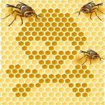 bees2(ビーズ)