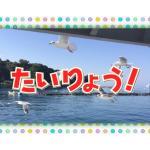 大漁まつり
