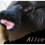 アリスリデルとチェシャ猫