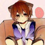 芝猫@雪猫