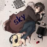 sky-devil