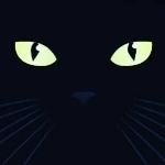 黒ネコ         ▶▶▶▶