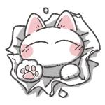 しゅろす かっつぇ( 城猫 )