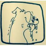 cucciolo(sorbet)