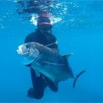 奄美の漁業協同組合員