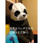まだ名無しのパンダ