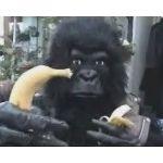 BLACK@バナナを忘れた