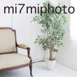 mi7miphoto_