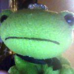 蛙 トロ鮪