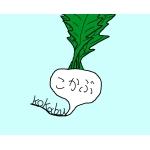 kabu0113