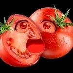 錯覚トマト