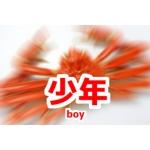 少年(Boy)