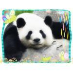 大熊猫だいすき
