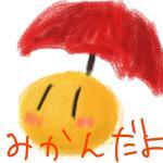 蜜柑@雨の日