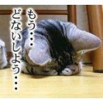 FUMI_ge
