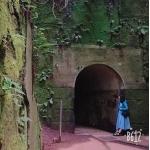 たら(Oh!SAKANA)