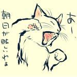 yukinohi