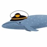 シロナガザトウクジラ