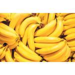 バナナワールド