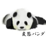 変態パンダ