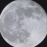 月光天照2020オリンペック☆彡