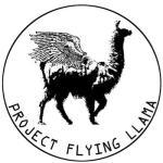 温泉芸術Flying Llama