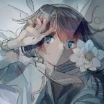 青栗鼠/Aoris