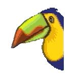 ジョイ(鳥)