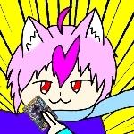 秋猫シュガー