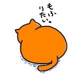 ふもっふ     (꒪˙ꇴ˙꒪)