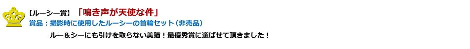 【ルーシー賞】賞品:撮影時に使用したルーシーの首輪セット(非売品)プレゼント