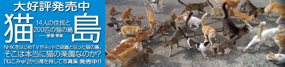 猫島写真集