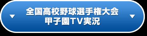 全国高校野球選手権大会 甲子園TV実況
