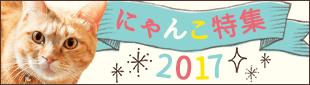 にゃんこ特集2017