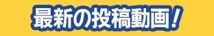 最新の動画(゚д゚)