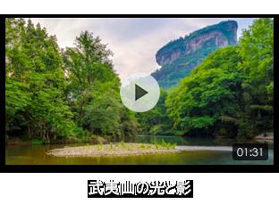 武夷山の光と影
